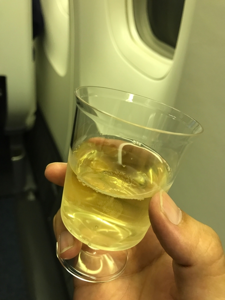 ミャンマー(ヤンゴン)ー成田線のANAビジネスクラス(NH814便)搭乗記!クレードルシートも中々良かった話。
