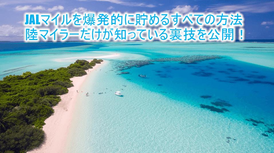 【JAL】陸マイラーの年間17万JALマイルの貯め方!誰でも出来る方法から裏ワザ完全ガイド!!