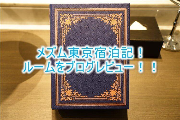 メズム東京 オートグラフ コレクションの宿泊記、ブログ的なルームレビュー!chapter 1のルームの詳細とは?