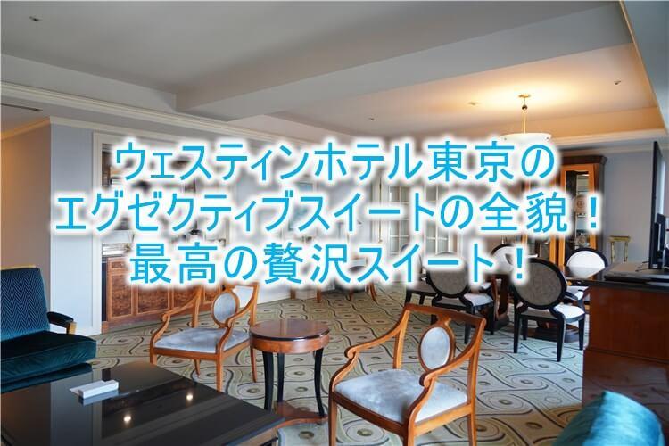 ウェスティンホテル東京ブログ宿泊記!エグゼクティブスイートのレビュー!アップグレードの秘密とは?